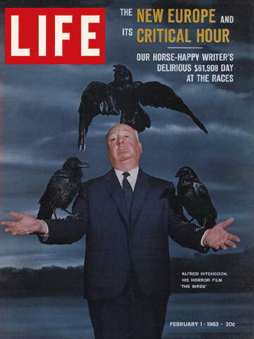 HITCHCOCK AND THE BIRDS