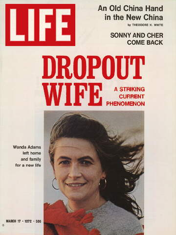 DROPOUT WIFE